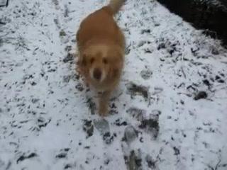 初雪にジオ弾けま~す♪