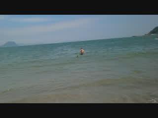 唐津の海で泳ぐぺぺ