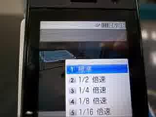ネコ動画02