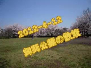 2012-4舞岡公園散策