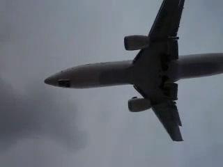 石垣島 飛行機の裏側(笑)