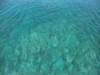 Wアーチ海域