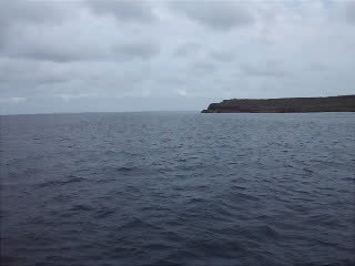 サンゴホール海域