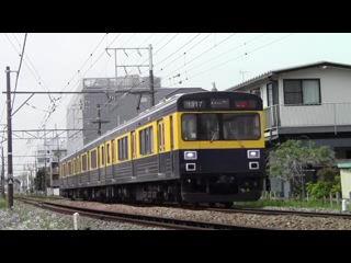東急1000系1017F(リバイバルyカラー)