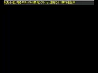 即PAT,IPAT連動【お小遣いが増大する】JRA-VAN対応競馬ソフト