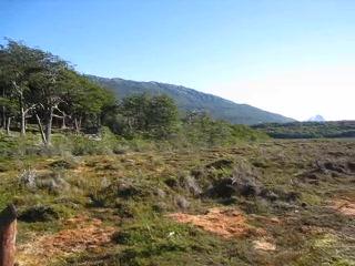 ウシュアイヤ 国立公園 part 2