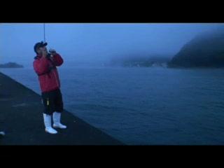 M-CAROで爆釣アジング 兵庫県気比の浜