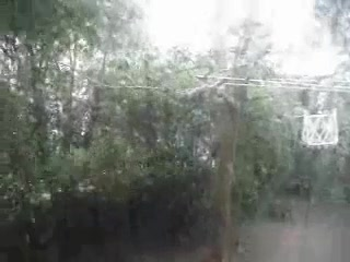 Kobe storm
