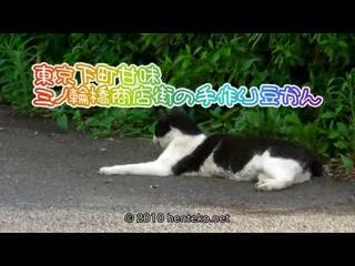 東京下町甘味 三ノ輪橋商店街の手作り豆かん