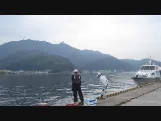 チヌ釣り境水道
