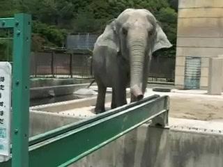 岡崎東公園・ふじ子ちゃん