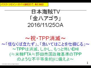 【金八アゴラ(2016/11/25)】(資料編)
