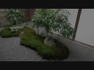 三千院庭園:京の散歩道